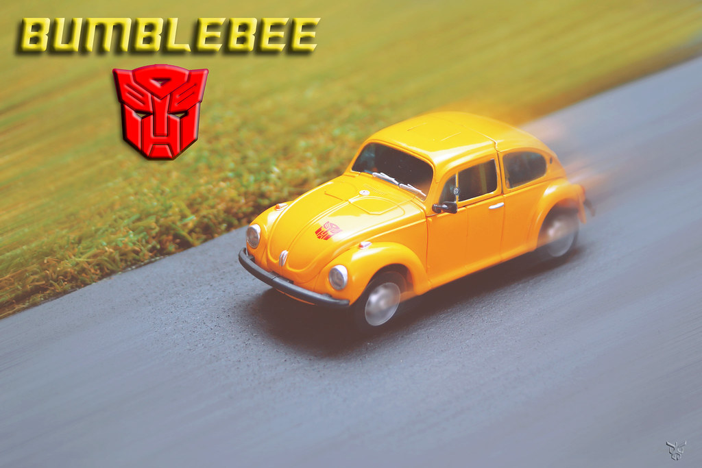 MP Bumblebee