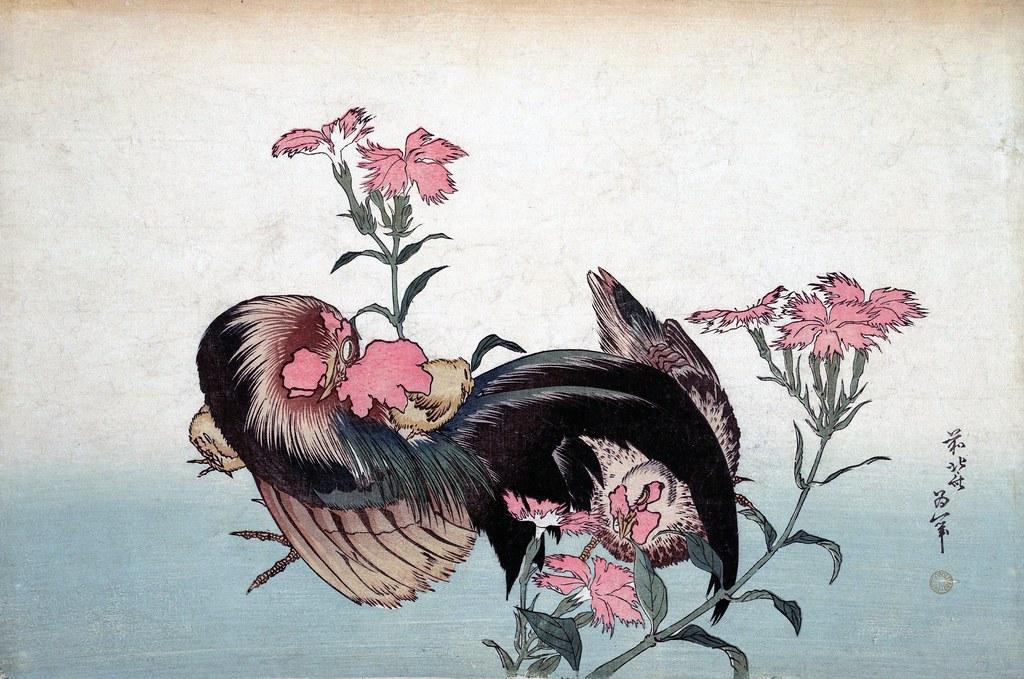 Cock, Hen and Nadeshiko