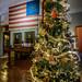 Christmas Tree & Flag