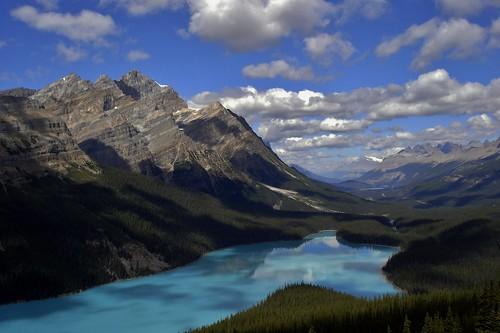 lake snow canada mountains landscape turquoise sony lac alberta banff neige paysage montagnes peytolake dsc05623 promenadedesglaciers lacpeyto parcnationaldebanff forêtdeconifères lacàtêtedeloup rocheuseusescanadiennes
