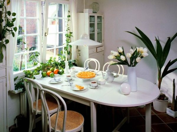 Trang trí cây cảnh trong nhà với chức năng lọc khí - Phần 1