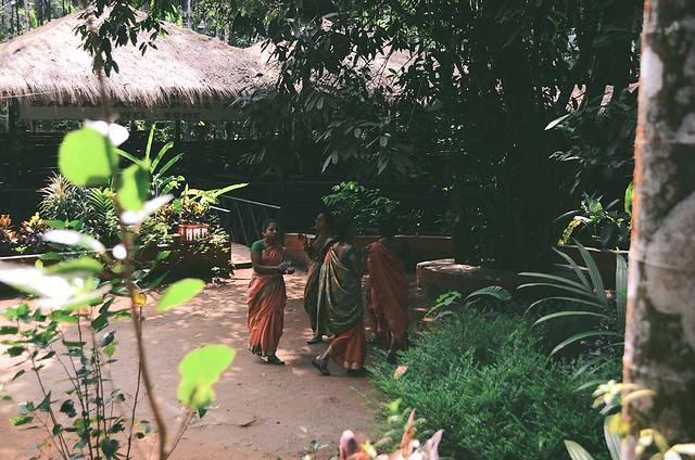 Goa - Spice Plantation   A Brown Table