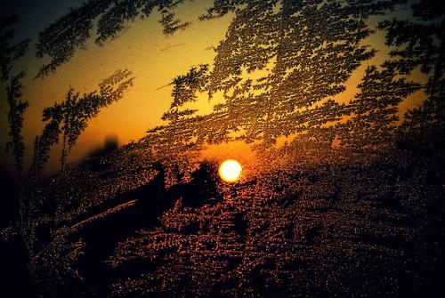 travel winter sunset shadow sky sun art texture glass car weather frozen nikon flickr frost serbia explore rime nikkor caffe artland hoar twop srbija thruglass themagichour 365dayproject artristic naturesoul