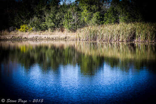 nature water sunshine canon reflections eos pier dock shadows lakes stevepage centralflorida itail ef24105mmf40lisusm stephenpage canon7d shadowbaypark doctorphillips canon5dmarkiii efs55250mmf456isstm