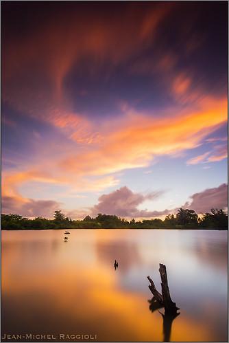 sunset martinique mangrove caribbean lamentin