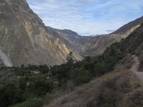 Trek du Cañon de Colca: et c'est parti pour un 2e jour de marche, dans le fond du canyon cette fois.