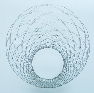 Wireframe Dupin Cyclide