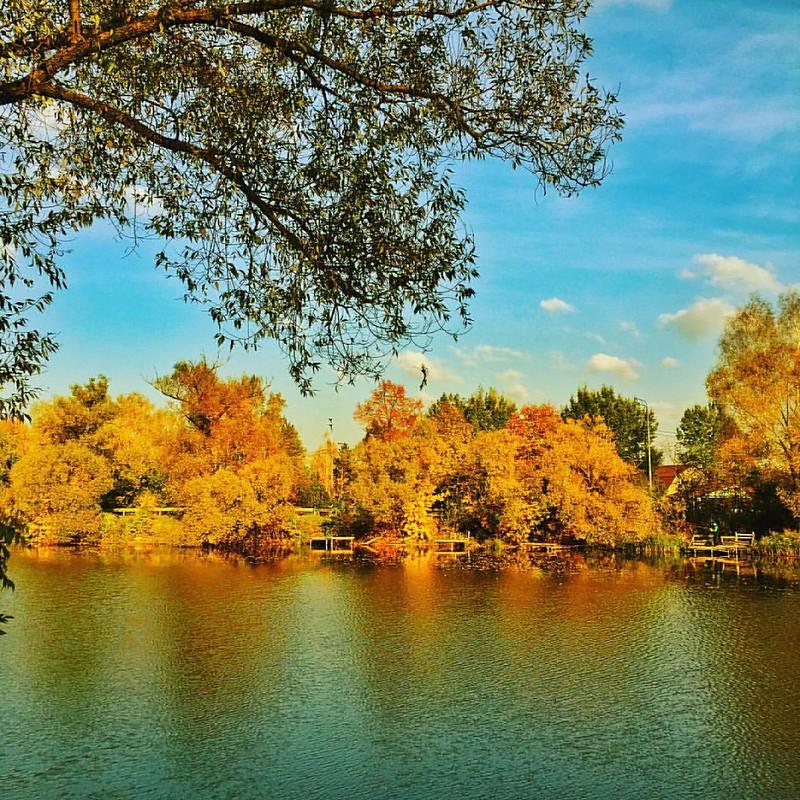 А #осень продолжает нас не отпускать #autumn #fall #fallcolors #autumncolors #непецино #подмосковье #россия #russia