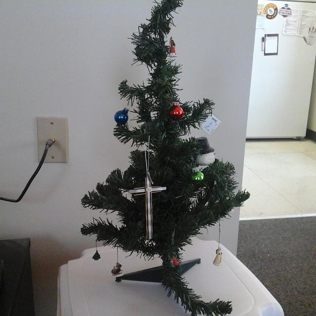 Humble Christmas: My Humble Little Charlie Brown #Christmas #tree 😊 🎄 #ho