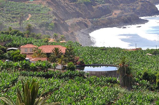 Coastal path, Los Realejos, Tenerife