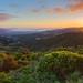 Evening's glow over Wellington by b.landscape