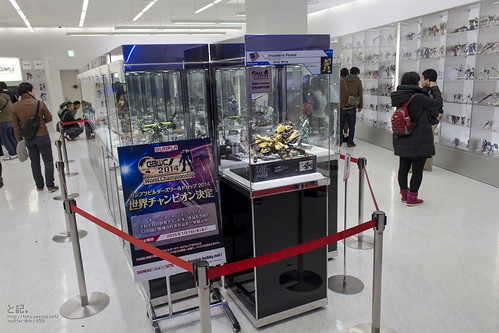GBWC2014_World_representative_exhibitions-1