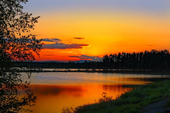 Sunset Cloud-Panther (Canon)