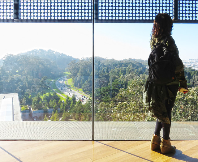 the view from De Yeung Museum; Golden Gate Park, San Francisco (2015)