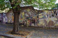 San Lorenzo - Alicè