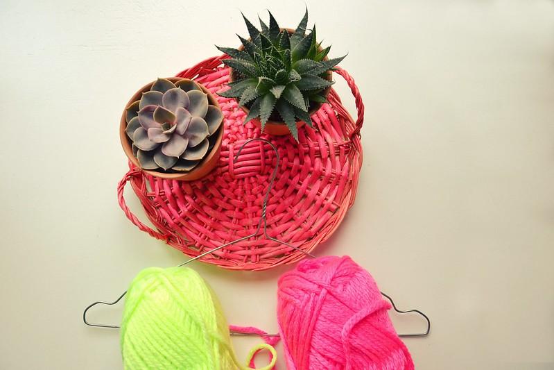 cactus con lana