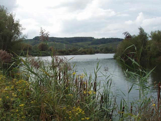 200709090073_Remerschen-nature-reserve_resize