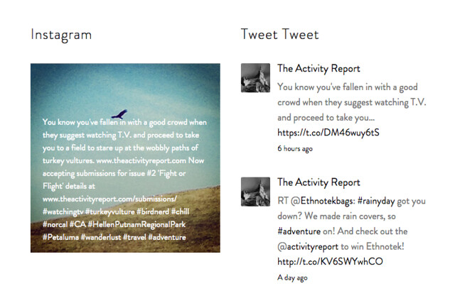 The Activity Report