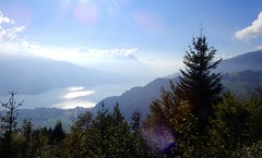 Lake of Thun with Beatenberg (right) and Niesen (center) in backlight