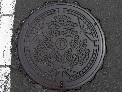 Tsuruga Fukui, manhole cover 2 (福井県敦賀市のマンホール2)