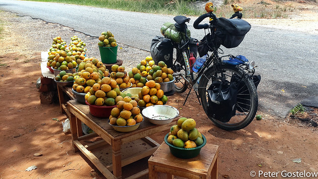 Mango stop