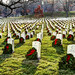 Quarter Million Wreaths laid in honor of the fallen at Arlington Cemetery.