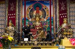 Buddha#12