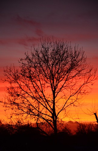sunset coclare tulla
