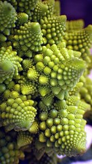 Close-up Fractal Food