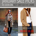 Not Dressed As Lamb January Sales Picks