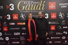 Catifa vermella VII Premis Gaudí (91)