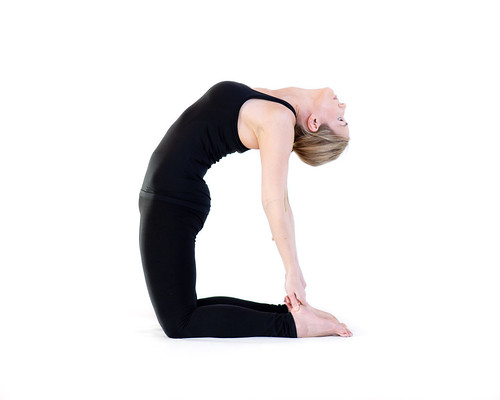 Yoga Oasis-6936