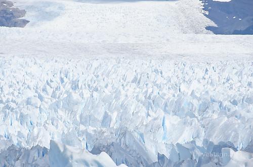 【写真】2015 世界一周 : ペリト・モレノ氷河/2015-01-27/PICT8855