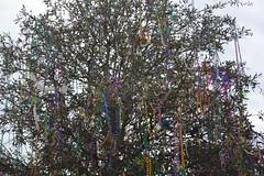050 Bead Tree