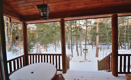 trees winter sunlight snow cold bird water mi river squirrel air cedar porch temperature feeders fernridge rapidriver march2015
