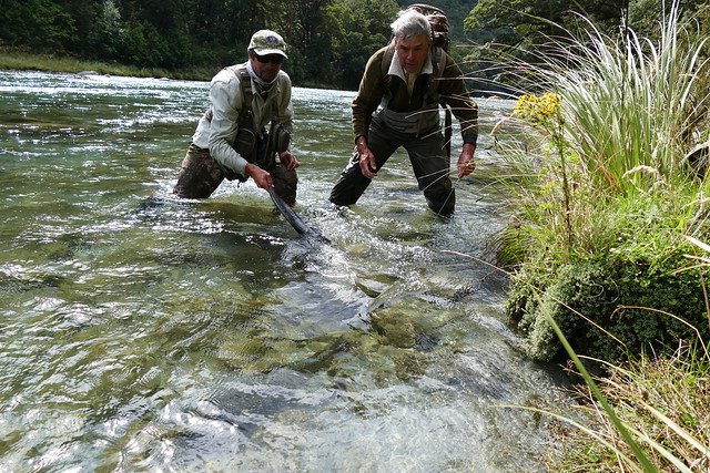 cedar-lodge-flyfishing-new zealand