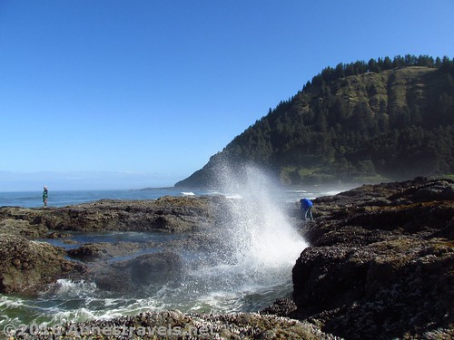 Adventures are not for the faint of heart.  Cape Perpetua, Oregon