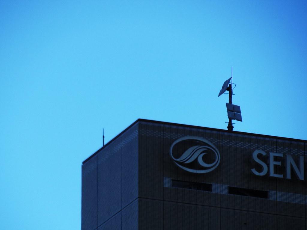 でっかい鳥が仙台国際ホテルのてっぺんに2