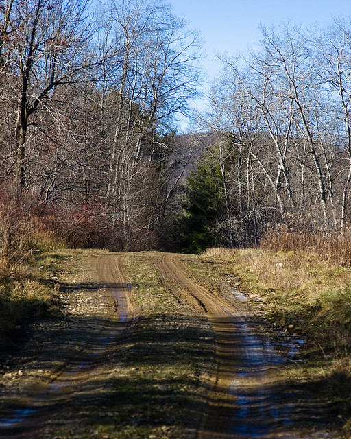 Wolf Run Road