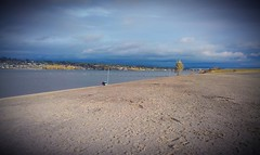"""Can't have a """"beach cruiser"""" without a beach! The Heavy Duti down at Broughton Beach on the Columbia River."""
