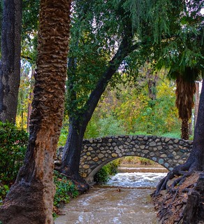 The Zanja in Sylvan Park