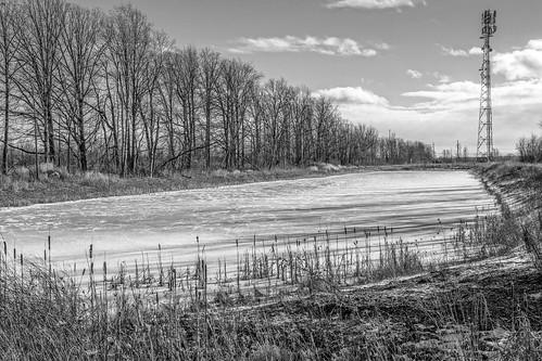 winter bw carletonplace bleakday