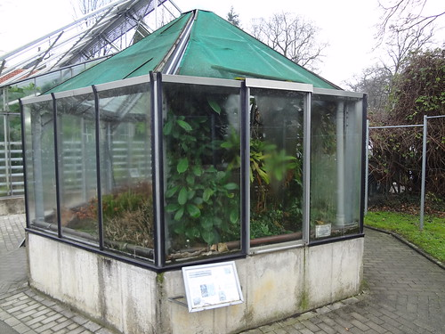Pavilion with carnivorous plants from tropics