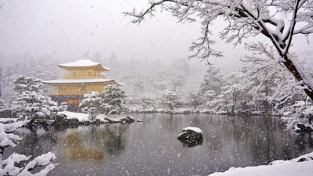 As the snow falls... / Kinkaku( The Golden Pavilion) - Rokuonji-Temple