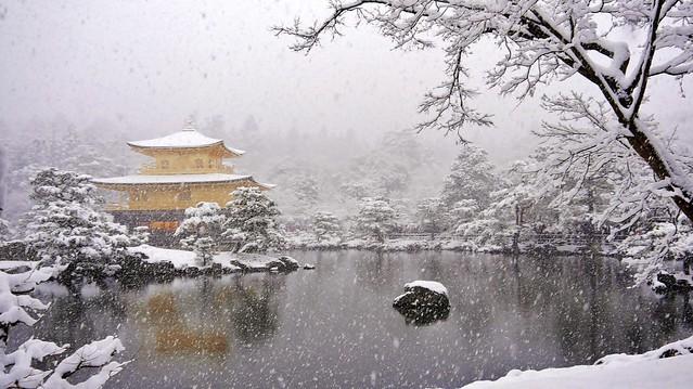 As the snow falls... / Kinkaku( The Golden Pavilion) - Rokuonji-Temple