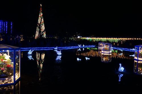Flower Fantasy 2015 illumination at Ashikaga Flower Park 33