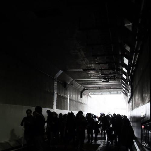 山手トンネルウォーク、家族で参加中。