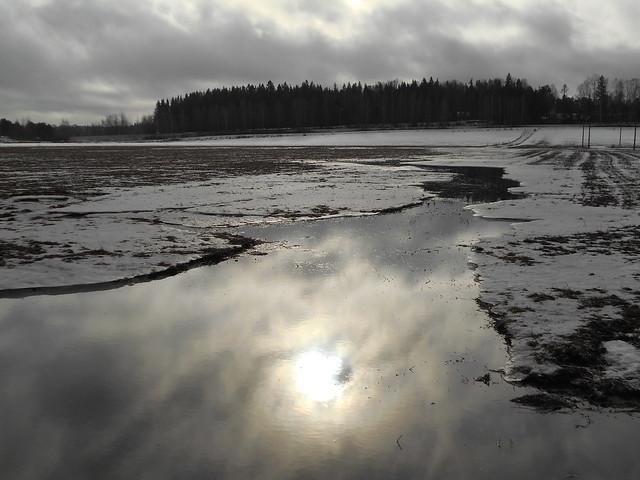 Poikkeuksellisen aikaisen kevään ja sulamisen erikoisilmiöitä: tulviva pelto Espoon Leppävaaran ja Karakallion välillä 23.2.2015