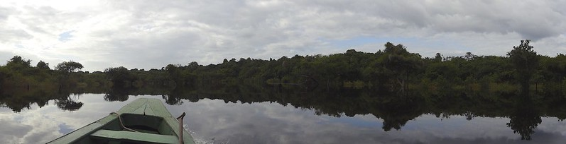 manaus-rio negro-amazon 95