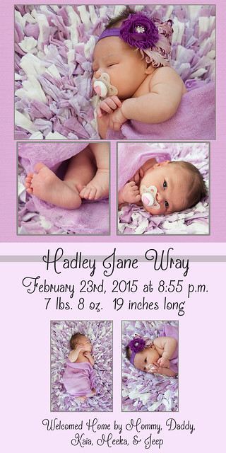 Hadley Birth Announcement